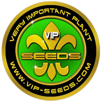 VIP Seeds Logo