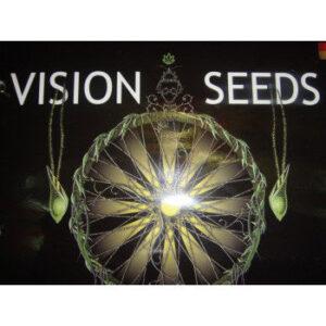Vision-Seeds-Logo
