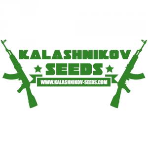 kalashnikov-seeds_300