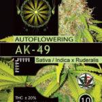 AK49-AUTOFEM-vision-seeds