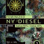 NY-DIESEL-FEM-vision-seeds