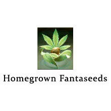 Homegrown-Fantaseeds-Logo