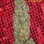 Mandala Seeds-Hubble Bubble