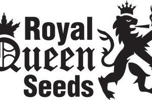 Royal Queen Seeds - Logo