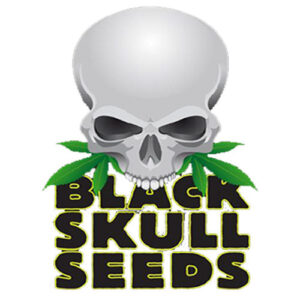Blackskull-Seeds-Logo
