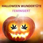 Halloween Wundertüte fem