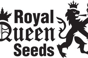 RQS-logo-2012