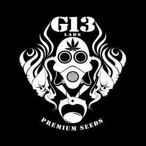 G13_Labs_New_Logo