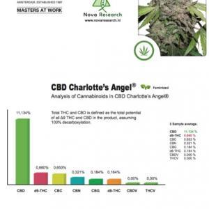 test-results-charlottes-angel-cbd-dutch-passion