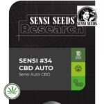Sensi-Seeds-Sensi-34-cbd-auto