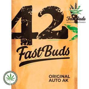 FastBuds-Original-Auto-AK
