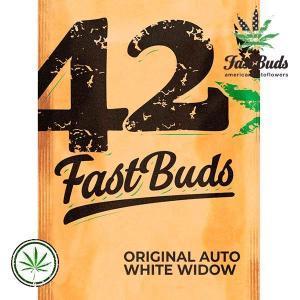 FastBuds-Original-Auto-White-Widow