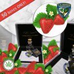 TH-Seeds-Strawberry-Glue-Cake-reg